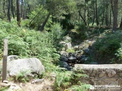 Pinares de Piedralaves; rascafria rutas senderistas brujula orientacion